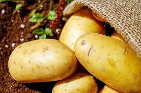 Large Idaho Potatoes 2